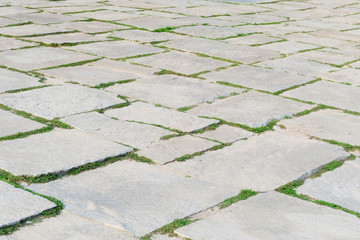Stone footpath pattern with green grass in perspective background for interior design.