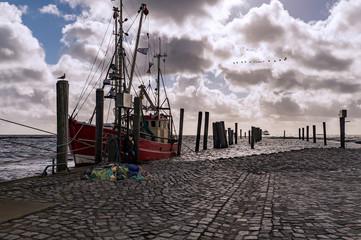 Krabbenkutter im Hafen von Schlüttsiel