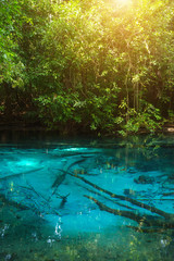Amazing nature, Blue pond in the forest. Krabi, Thailand.