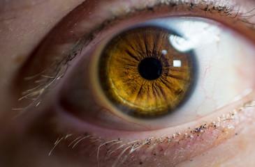 macro close up of a female eye