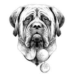 head dog breed Mastiff with new year's balls in his mouth, sketch vector graphics black and white drawing