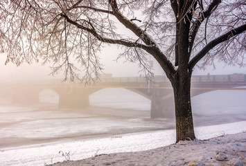 foggy morning near the bridge through the frozen river