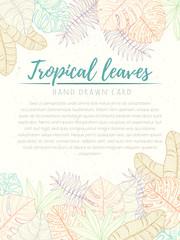 Hand drawn tropical palm leaves card