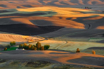 Sunset aerial view over Palouse Hills with farmland in autumn season.