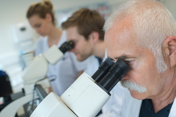 scientists studying new virus in lab