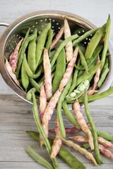 Gemüsebohnen fallen aus einem Sieb