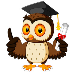 Owl cartoon wearing graduation cap