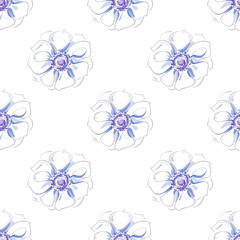 Hand-drawn seamless pattern of beautiful delicate light blue flower on a white background