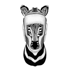 Zebra Horse Wild boxer Boxing animal Sport fitness illutration Wild animal wearing boxer helmet Boxing protection Image for t-shirt, poster, banner