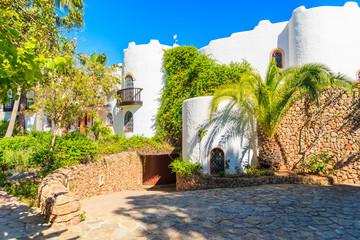 Wall Mural - Luxury white colour holiday villas in tropical gardens in Cala Nova area of Ibiza island, Spain