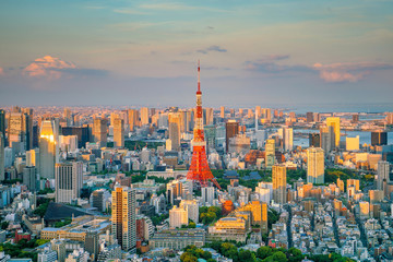 Aluminium Prints Asian Famous Place Tokyo skyline with Tokyo Tower in Japan