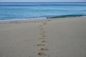 Strand, Urlaub, Meer, Sonne,
