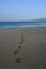 Strand, Spuren, Urlaub