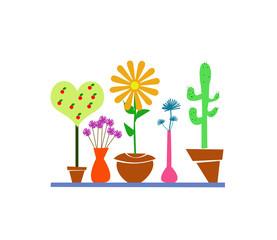 vasi con fiori e piante su sfondo bianco