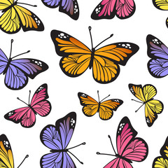 Tropical butterfly seamless hand drawn pattern. Cute cartoon insects isolated on white background. Vector illustration
