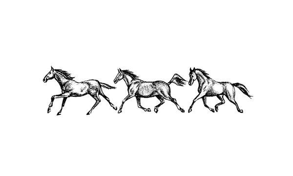 Hand drawn running horses
