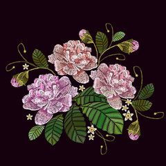 Classical embroidery pink peonies on black background, template fashionable clothes, t-shirt design. Embroidery peonies flowers vector