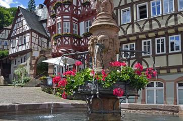 Brunnen am Marktplatz in Miltenberg