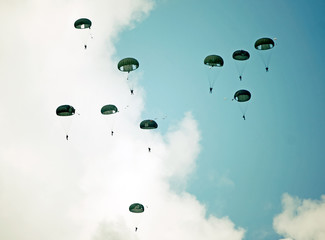 Parachutists in the sky