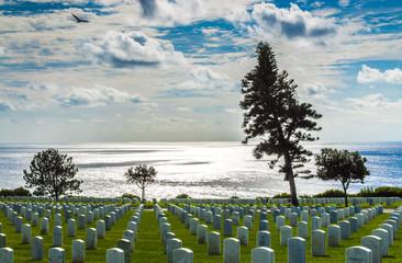 military cemetery overlooking Pacific ocean with bird in flight