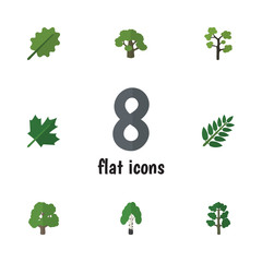 Flat Icon Ecology Set Of Tree, Oaken, Decoration Tree And Other Vector Objects. Also Includes Alder, Wood, Maple Elements.