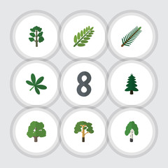Flat Icon Nature Set Of Wood, Timber, Park And Other Vector Objects. Also Includes Park, Maple, Wood Elements.
