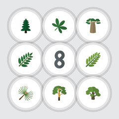 Flat Icon Natural Set Of Wood, Acacia Leaf, Baobab And Other Vector Objects. Also Includes Oaken, Wood, Spruce Elements.