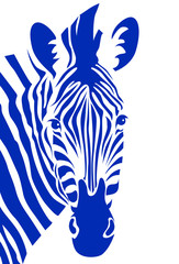 Zebra head. Vector illustration