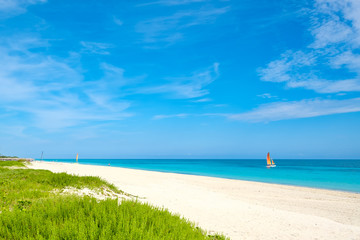 Wall Mural - Summer day at the beautiful Varadero beach  in Cuba