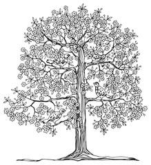 Hand drawn tree with birds