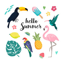 Summer design elements. Set with tropical birds, leaves, ice cream and exotic flowers. tropical paradise vector.