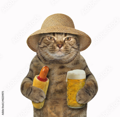 The cat in the straw hat is holding a cup of beer and a hotdog. White background.