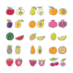 Fruit hand drawn icon set in flat style