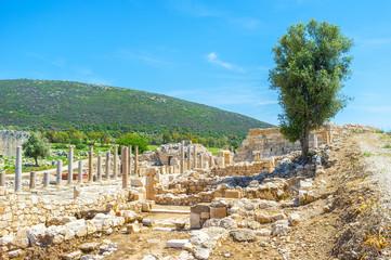 The lycian city Patara