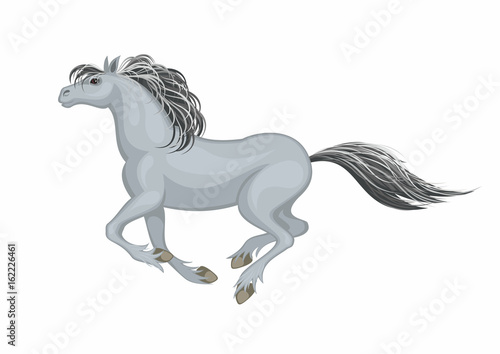 The realistic image of a beautiful horse on a white background. Vector illustration.