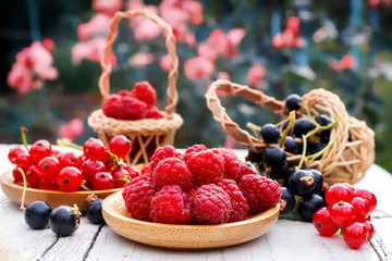 Fresh garden berry raspberries, red and black currants. Fresh berries in wooden dishes on the garden table