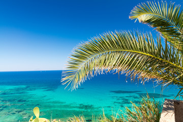 Palm branch against stunning crystal clear sea waters, holiday concept