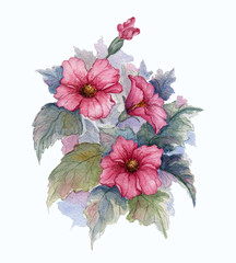 Flowering branch of red flowers on white background. Watercolor illustration.