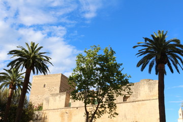 Castle of Bari in Italy with palm trees and blue sky