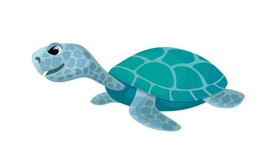 cute turtle, isolated cartoon image, vector illustration