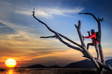 One backpacker stands on dead trees. He was using a binoculars to look on the sky in sunset.