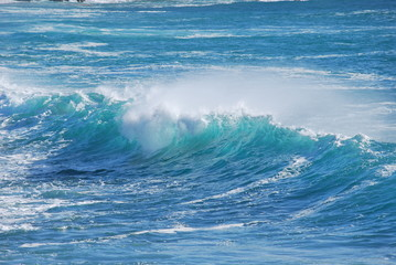Hawaiianische Welle 1