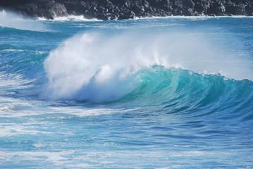 hawaiianische Welle 3