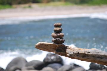 Steinmännli auf Ast am Strand von Molokai