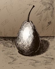 Pear. Illustration of a pear fruit. A sketch of a pear.