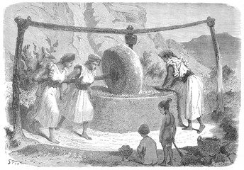 Olive Oil mill . Date: 1872