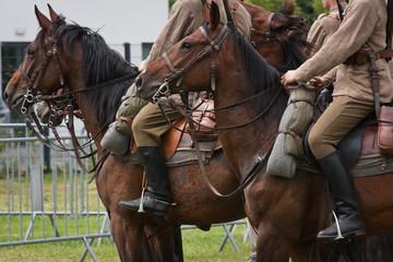 Konie i Ułani