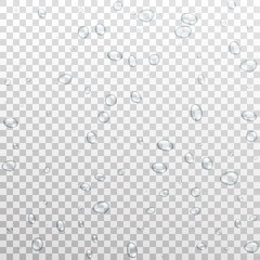 Water drops background. Realistic vector water droplets isolated on transparent background