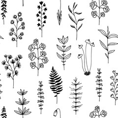 Seamless pattern with black doodle flowers and herbs, vector illustration on white background