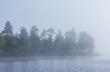 Fog and trees on the shore of Lake Ladoga